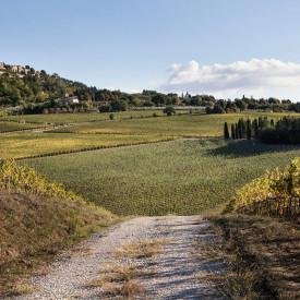 Azienda Agricola Canneto